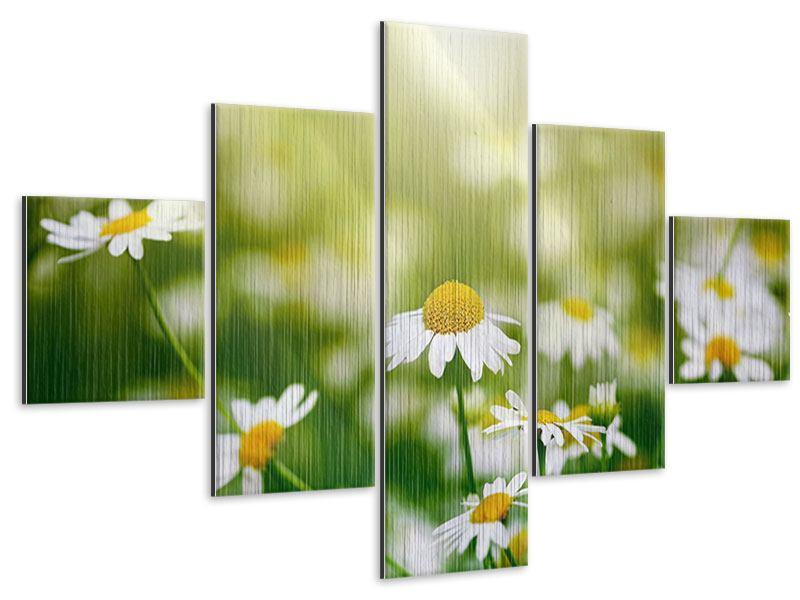Metallic-Bild 5-teilig Die Gänseblümchen