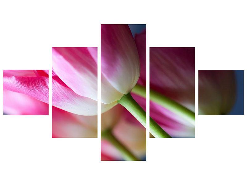Metallic-Bild 5-teilig Makro Tulpen