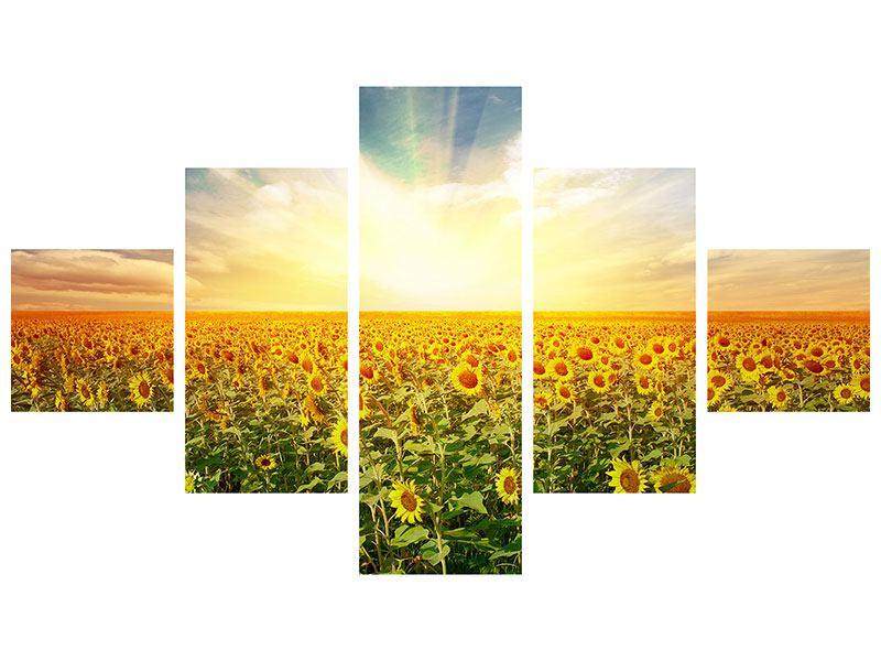 Metallic-Bild 5-teilig Ein Feld voller Sonnenblumen