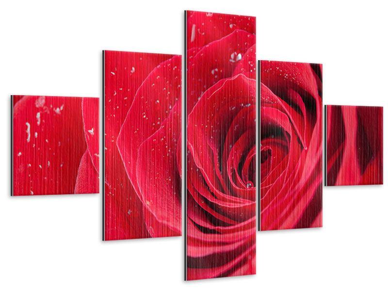 Metallic-Bild 5-teilig Rote Rose im Morgentau