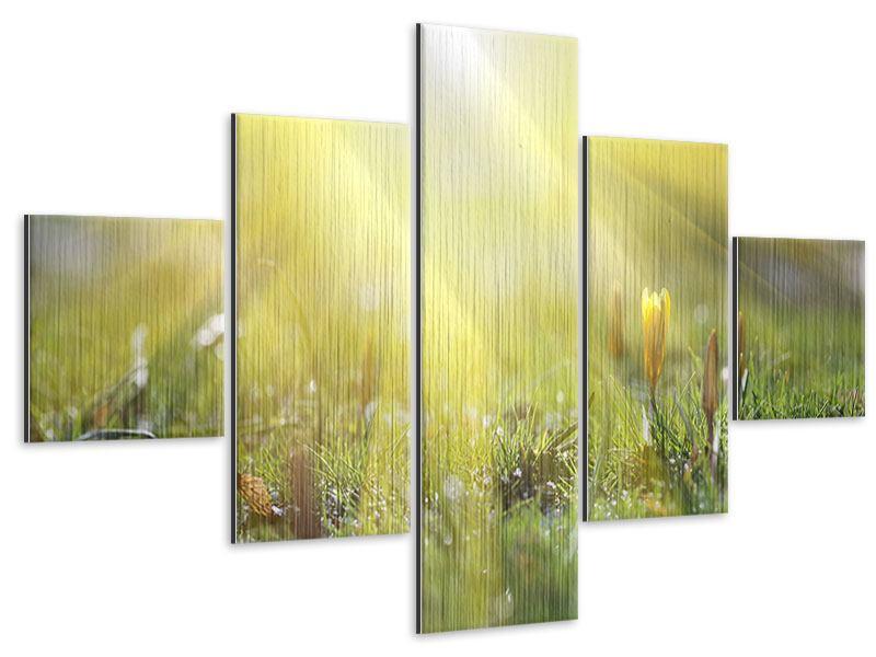Metallic-Bild 5-teilig Blumige Wiese