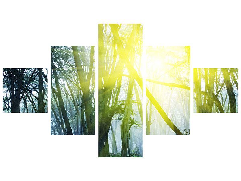 Metallic-Bild 5-teilig Sonnenstrahlen im Wald