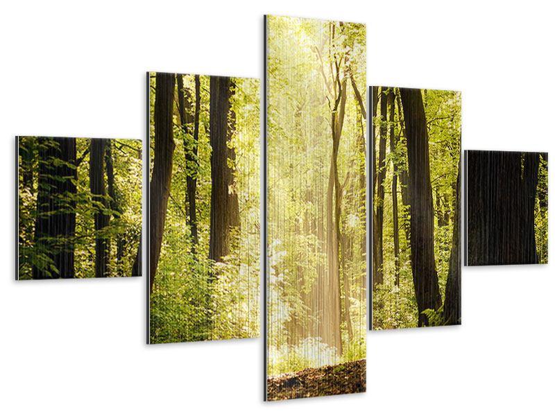 Metallic-Bild 5-teilig Sonnenaufgang im Wald