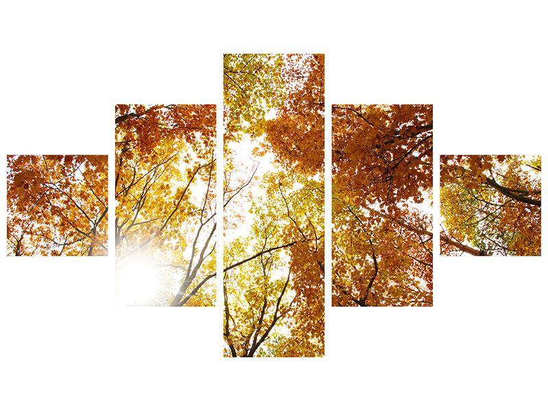 Metallic-Bild 5-teilig Herbstbäume