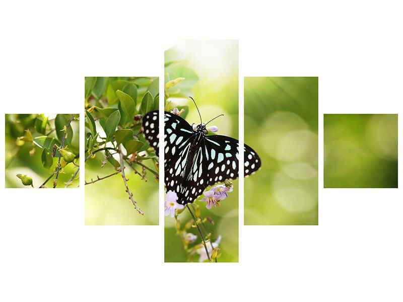 Metallic-Bild 5-teilig Papilio Schmetterling XXL