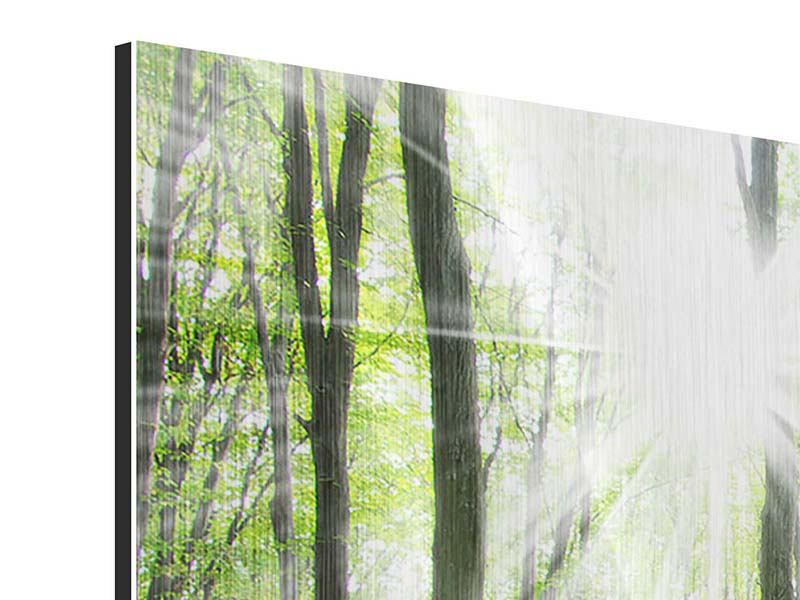 Metallic-Bild 5-teilig Magisches Licht in den Bäumen