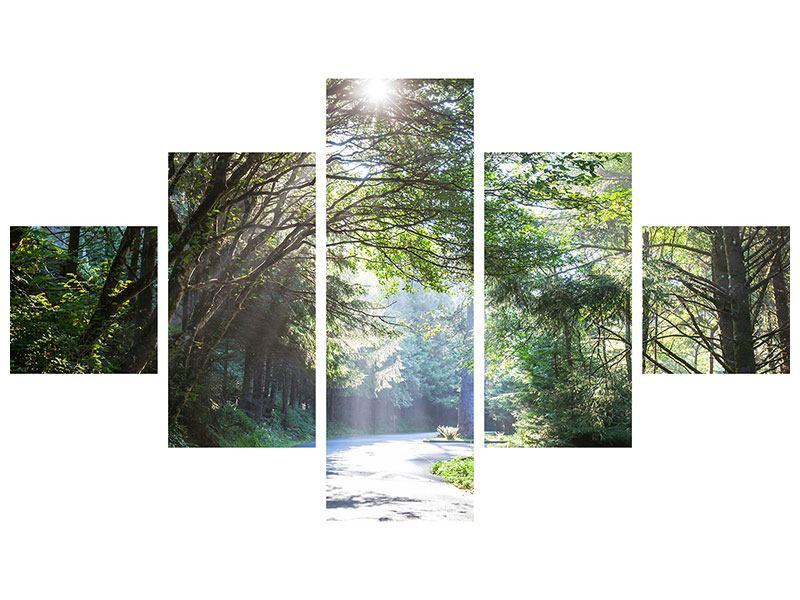 Metallic-Bild 5-teilig Sonniger Waldweg