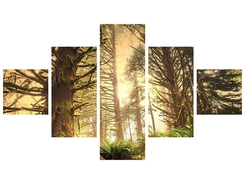 Metallic-Bild 5-teilig Sonnenuntergang im Dschungel
