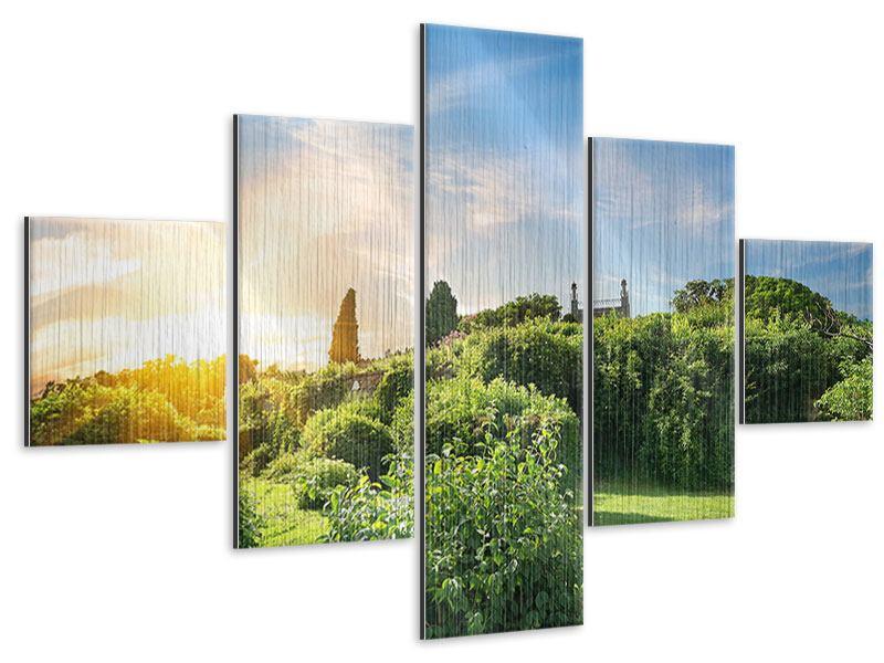 Metallic-Bild 5-teilig Sonnenaufgang im Park