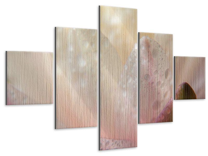 Metallic-Bild 5-teilig Close Up Seerose