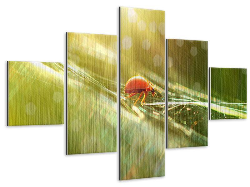 Metallic-Bild 5-teilig Marienkäfer im Sonnenlicht