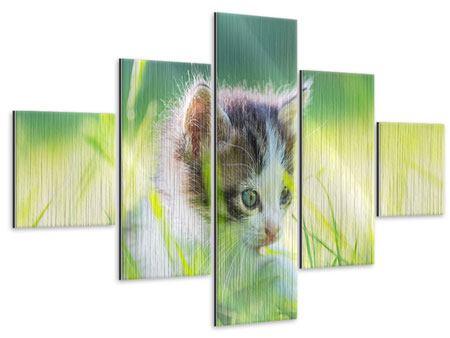 Metallic-Bild 5-teilig Kitten