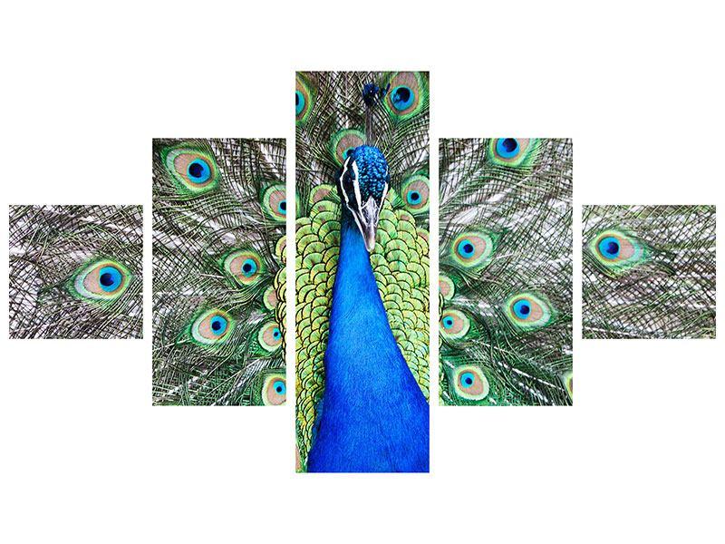 Metallic-Bild 5-teilig Blauer Pfau