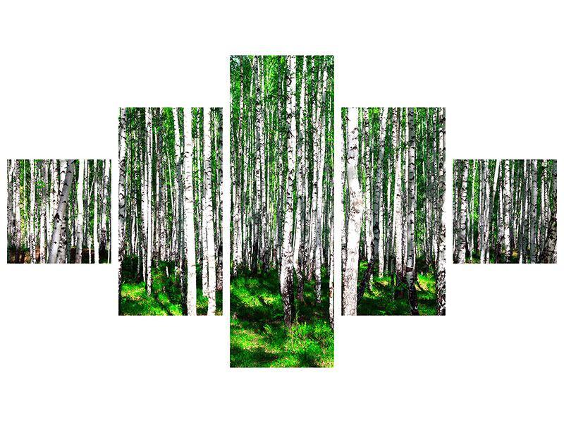 Metallic-Bild 5-teilig Sommerlicher Birkenwald