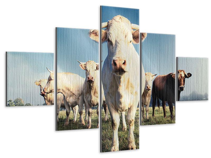 Metallic-Bild 5-teilig Kühe
