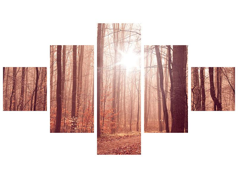 Metallic-Bild 5-teilig Sonnenuntergang im Herbstwald