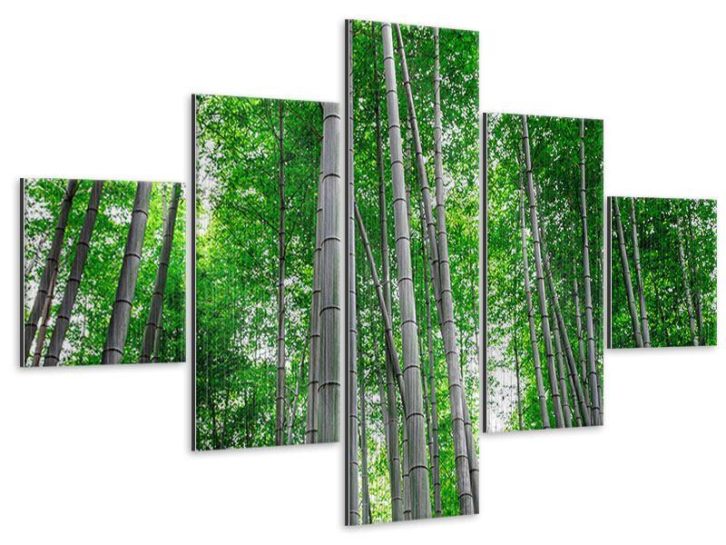 Metallic-Bild 5-teilig Bambuswald