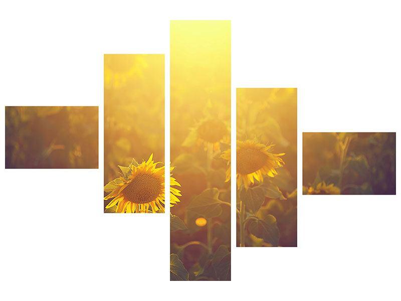 Metallic-Bild 5-teilig modern Sonnenblumen im goldenen Licht