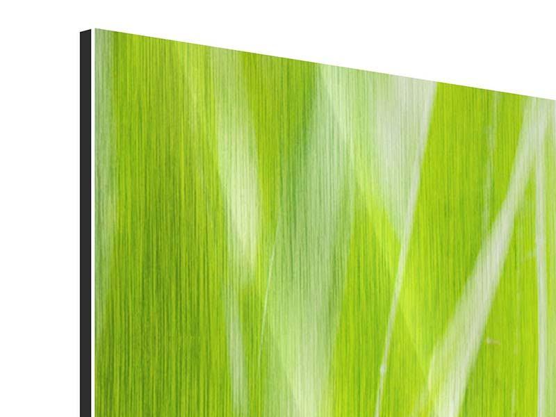 Metallic-Bild 5-teilig modern Gras XXL