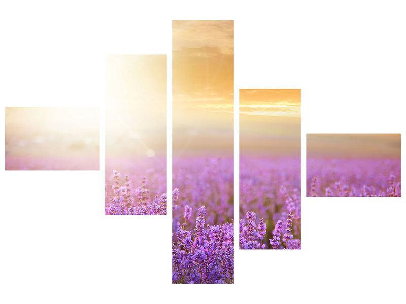 Metallic-Bild 5-teilig modern Sonnenuntergang beim Lavendelfeld
