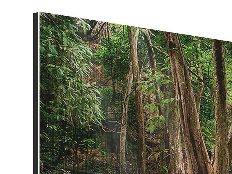 Metallic-Bild 5-teilig modern Deep Forest