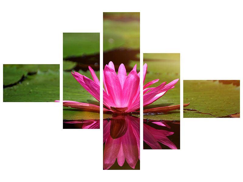 Metallic-Bild 5-teilig modern Lotus im Wasser