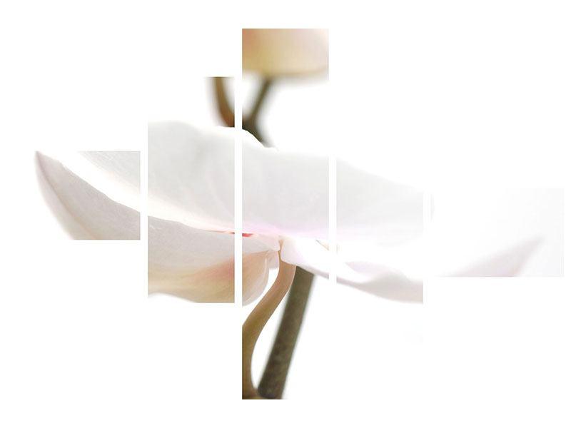 Metallic-Bild 5-teilig modern XXL Orchideenblüte