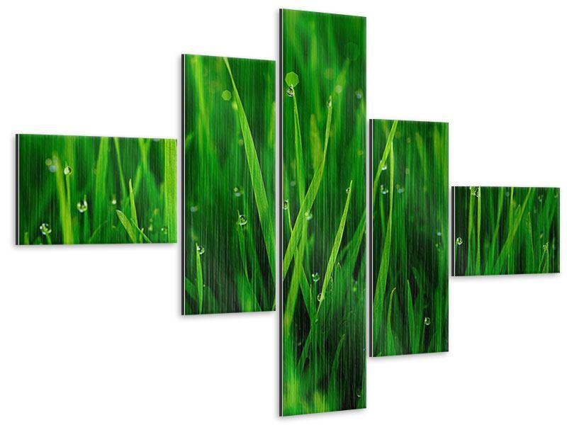 Metallic-Bild 5-teilig modern Gras mit Morgentau