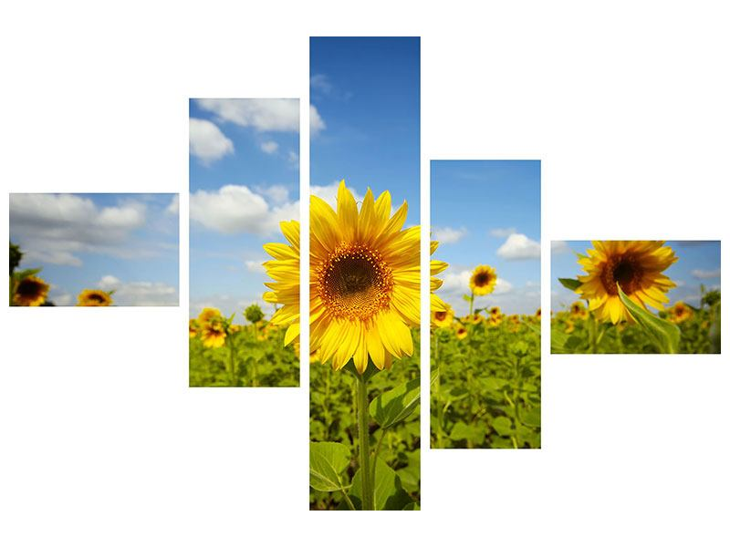 Metallic-Bild 5-teilig modern Sommer-Sonnenblumen