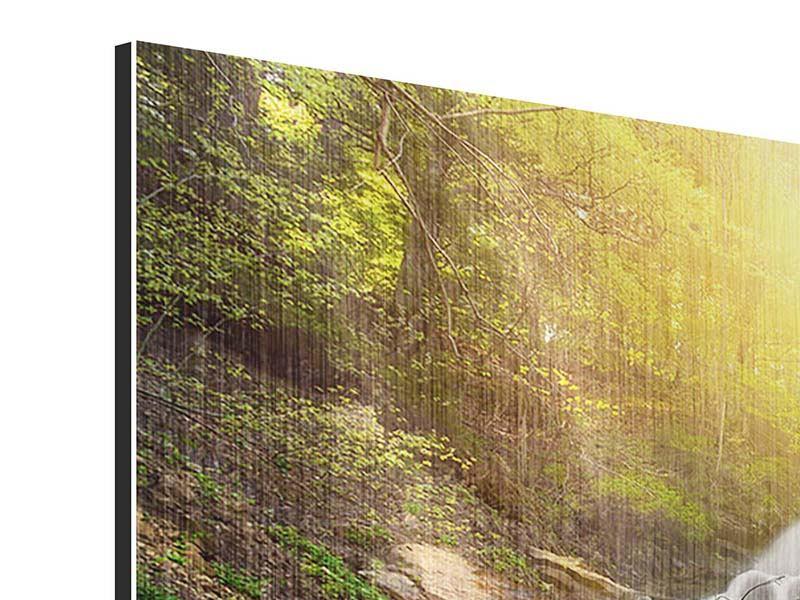 Metallic-Bild 5-teilig modern Naturschönheit