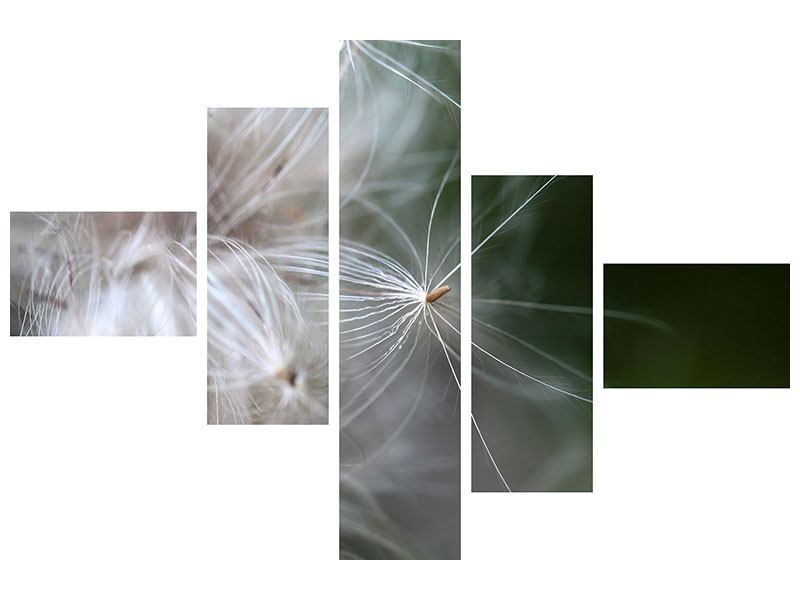 Metallic-Bild 5-teilig modern Close up Blütenfasern