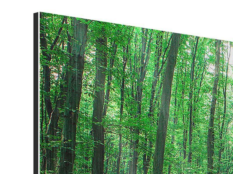 Metallic-Bild 5-teilig modern Tannenwald