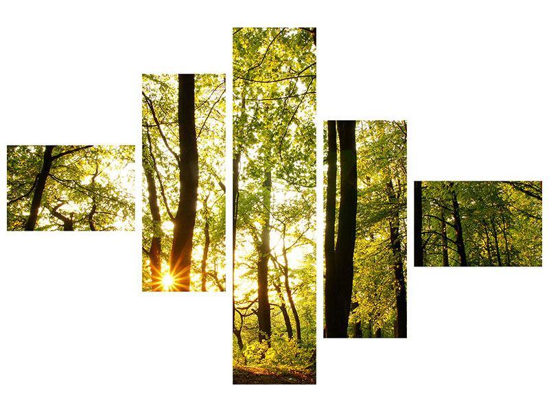 Metallic-Bild 5-teilig modern Sonnenuntergang zwischen den Bäumen