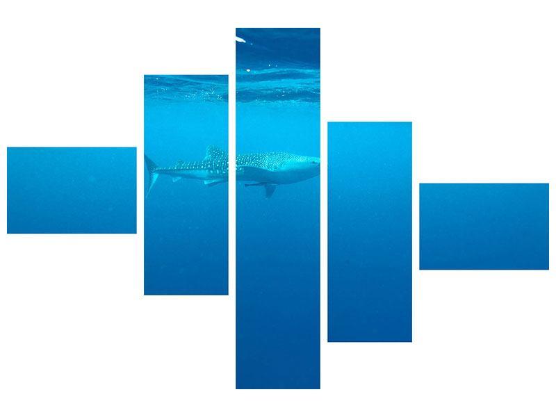 Metallic-Bild 5-teilig modern Der Walhai