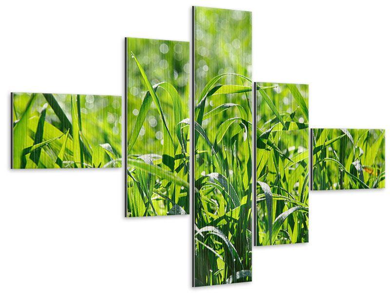 Metallic-Bild 5-teilig modern Sonniges Gras