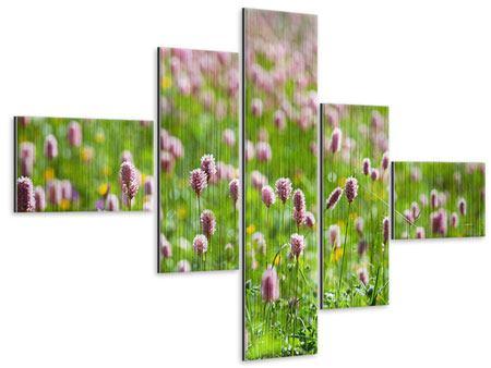 Metallic-Bild 5-teilig modern Der Wiesenklee