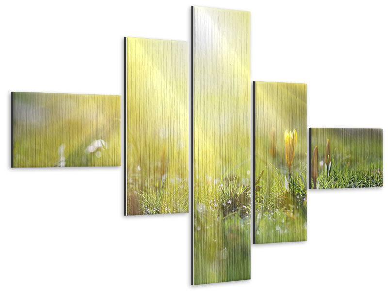 Metallic-Bild 5-teilig modern Blumige Wiese