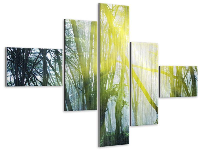 Metallic-Bild 5-teilig modern Sonnenstrahlen im Wald