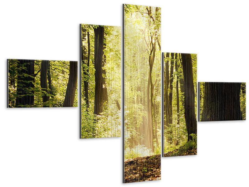 Metallic-Bild 5-teilig modern Sonnenaufgang im Wald