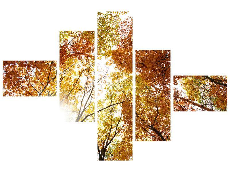 Metallic-Bild 5-teilig modern Herbstbäume