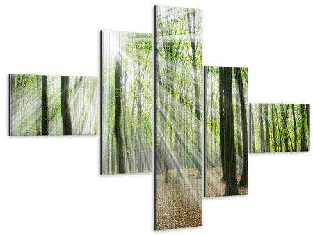 Metallic-Bild 5-teilig modern Magisches Licht in den Bäumen