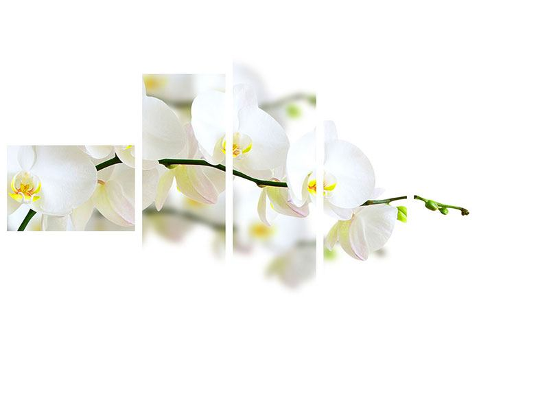Metallic-Bild 5-teilig modern Weisse Orchideen
