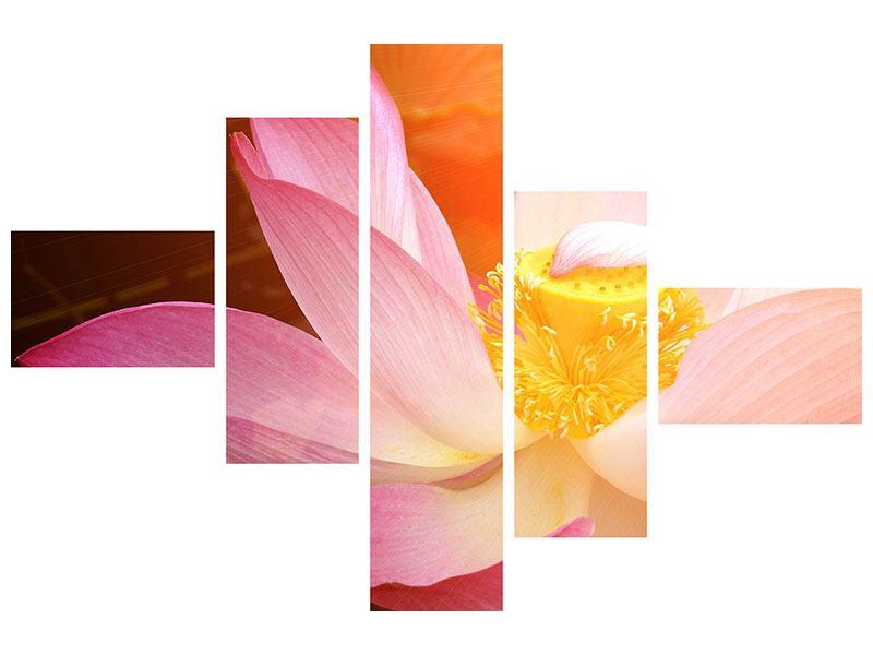 Metallic-Bild 5-teilig modern Close Up Lotus