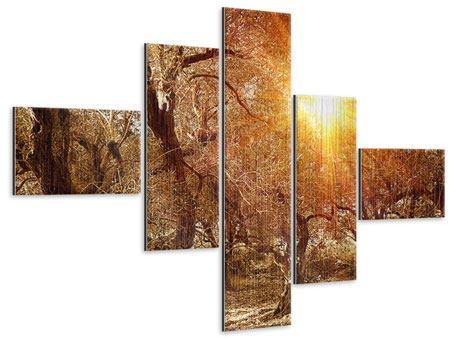Metallic-Bild 5-teilig modern Olivenbäume im Herbstlicht
