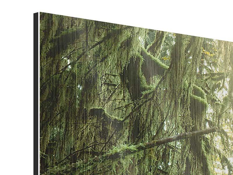 Metallic-Bild 5-teilig modern Verträumter Wald