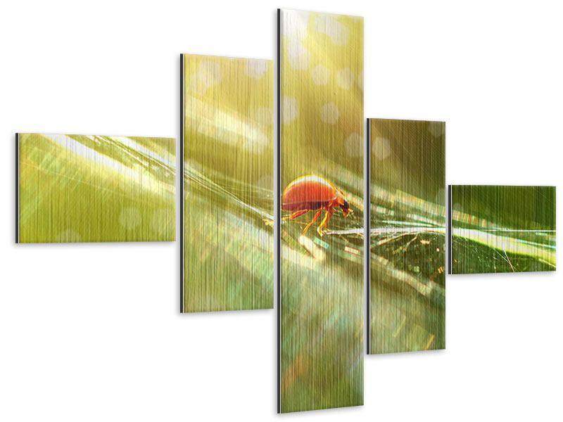 Metallic-Bild 5-teilig modern Marienkäfer im Sonnenlicht