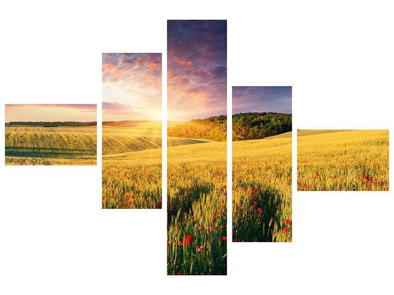 Metallic-Bild 5-teilig modern Ein Blumenfeld bei Sonnenaufgang