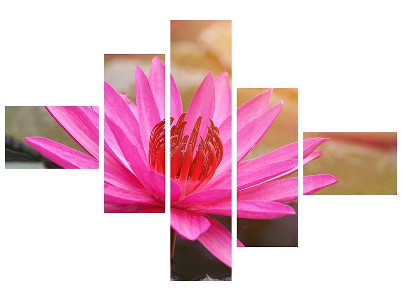 Metallic-Bild 5-teilig modern Sonnige Seerose
