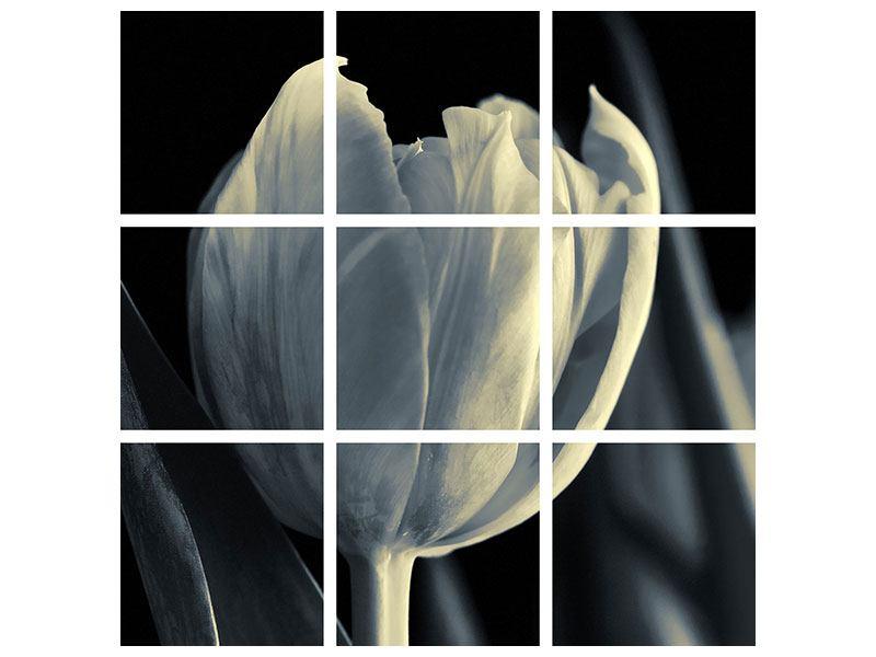Metallic-Bild 9-teilig Schwarzweissfotografie XXL Tulpe