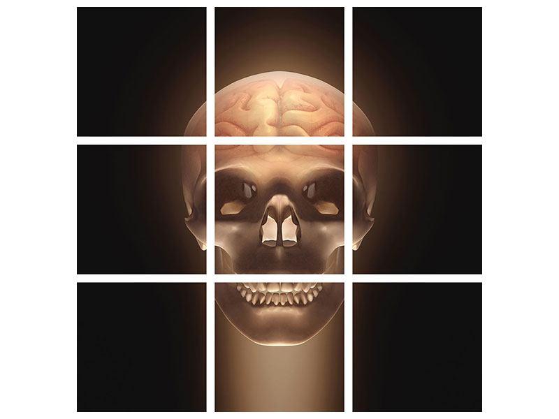 Metallic-Bild 9-teilig Schädel